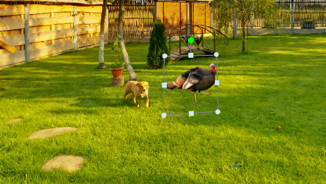 Screenshot of a turkey object selected to be animated in CenarioVR